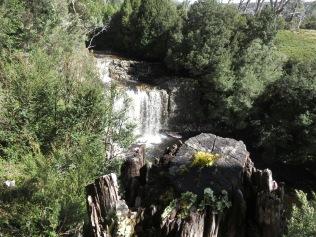 Pencil Pines Falls