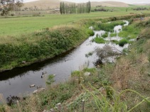 """The """"Platypus Walk"""" along the Clyde River"""