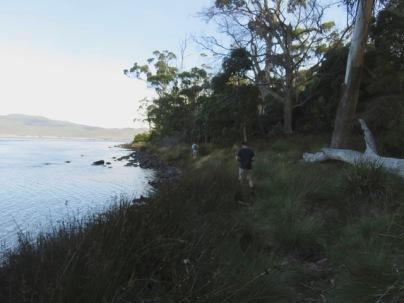 Walking to Cloudy Bay