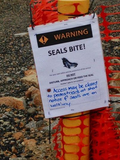 Seal warning at Narooma