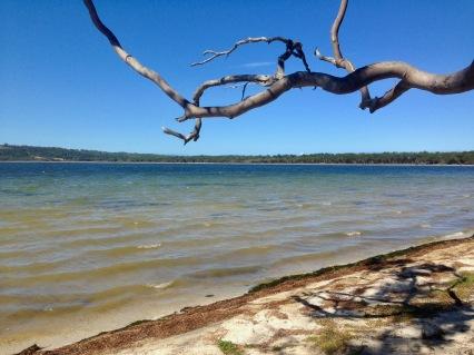 Wallagoot Lake