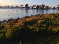 From Raymond Island looking back to Paynesville