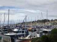 Oyster Cove Marina - Kettering