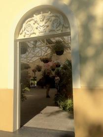 John Hart Conservatory