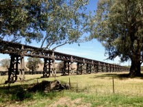 Historic Railway Bridge